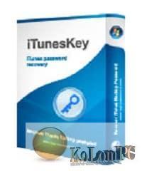 Top Password iTunesKey