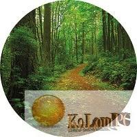 Forest Walk 3D Screensaver
