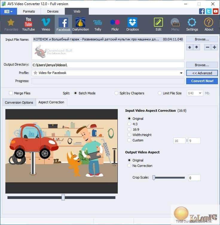 AVS Video Converter settings